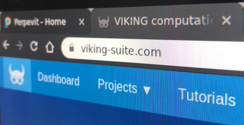Photo of a browser's address bar showing viking-suite.com